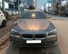 Bán xe BMW 5 Series 520i đời 2016, màu xám, xe nhập  giá 1 tỷ 600 tr tại Hà Nội