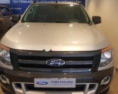 Cần bán lại xe Ford Ranger Wildtrak 3.2L 2015, màu bạc, nhập khẩu nguyên chiếc, giá 700tr giá 700 triệu tại Tp.HCM