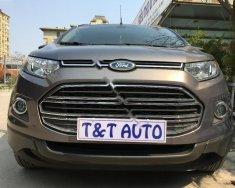 Bán xe Ford EcoSport năm sản xuất 2014, màu xám, giá 525tr giá 525 triệu tại Hà Nội