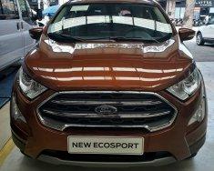 Ford Ecosport Titanium 1.5 2018 hoàn toàn mới giá 640 triệu tại Tp.HCM