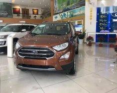 Cần bán Ford EcoSport sản xuất năm 2018 giá 545 triệu tại Thái Nguyên