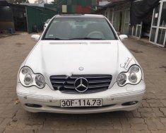 Cần bán Mercedes sản xuất 2004, màu trắng chính chủ, giá tốt giá 193 triệu tại Hà Nội