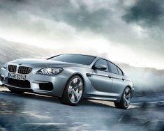 Bán BMW M6 Gran năm 2016, nhập khẩu nguyên chiếc, giao xe ngay, giá cực tốt giá 6 tỷ 688 tr tại Tp.HCM