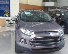 Cần bán Ford EcoSport model 2017 Titanium 1.5, màu nâu giá cực rẻ, hotline 0942552831 giá 580 triệu tại Hà Nội