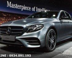 Mercedes E300 model 2018 - Ưu đãi đặc biệt, giao xe ngay giá 2 tỷ 700 tr tại Tp.HCM