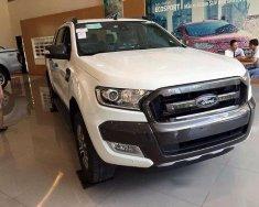 Cần bán xe Ford Ranger Wildtrak 3.2 AT đời 2017, nhập khẩu giá 879 triệu tại Hà Nội