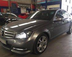 Mercedes C200 Blue Efficiency - Ô tô cũ chất lượng, giá tốt giá 835 triệu tại Tp.HCM