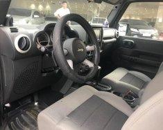 Cần bán gấp Jeep Wrangler sản xuất 2009, nhập khẩu nguyên chiếc giá 1 tỷ 450 tr tại Tp.HCM