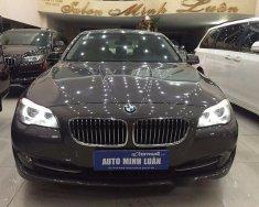 Bán BMW 5 Series 520i đời 2013, màu nâu số tự động giá 1 tỷ 350 tr tại Tp.HCM