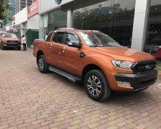 Cam kết giao ngay Ford Ranger Wiltrak đời 2017, màu nâu, nhập khẩu nguyên chiếc giá 920 triệu tại Hà Nội