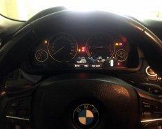 Cần bán gấp BMW 5 Series 528i sản xuất 2010, xe nhập ít sử dụng giá 1 tỷ 490 tr tại Hà Nội
