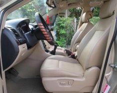 Bán Chevrolet Captiva LT đời 2007, màu vàng  giá 285 triệu tại BR-Vũng Tàu