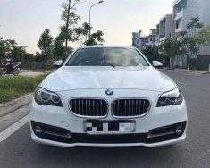 Chính chủ bán xe BMW 5 Series 520i đời 2013, màu trắng, nhập khẩu giá 1 tỷ 390 tr tại Hà Nội