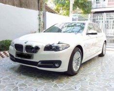 Cần bán gấp BMW 5 Series 520i đời 2015, màu trắng, xe nhập còn mới giá 1 tỷ 610 tr tại Tp.HCM