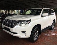 Cần bán xe Toyota Land Cruiser Prado VX năm 2018, màu trắng, nhập khẩu giá 2 tỷ 262 tr tại Hà Nội