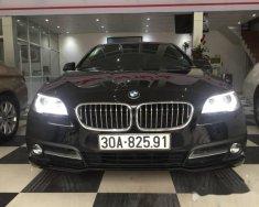 Bán ô tô BMW 5 Series 520i đời 2015, màu đen chính chủ giá 1 tỷ 585 tr tại Hà Nội
