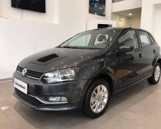 (ĐẠT DAVID) Bán Volkswagen Polo Hatchback 2017, màu đen titan, nhập khẩu chính hãng. LH 0933.365.188 giá 695 triệu tại Tp.HCM