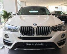 Bán BMW X4 xDriver20i đời 2017, màu trắng, nhập khẩu giá 2 tỷ 399 tr tại Tp.HCM