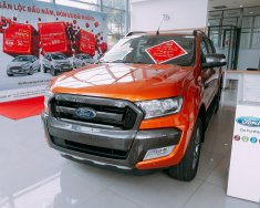 Bán xe Ford Ranger Wildtrak 3.2L sản xuất 2017, nhập khẩu giá 925 triệu tại Tp.HCM