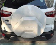 Ford EcoSport Titanium 1.0L Ecoboost 2018, xe đủ màu, liên hệ đặt xe ngay để nhận thông tin ưu đãi giá 689 triệu tại Tp.HCM