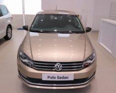 (ĐẠT DAVID) Bán Volkswagen Polo Sedan đời 2017, màu nâu, xe mới 100% nhập khẩu chính hãng - LH: 0933.365.188 giá 699 triệu tại Tp.HCM