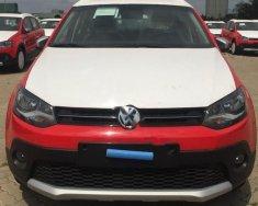 Bán ô tô Volkswagen Polo đời 2017, màu đỏ, xe nhập giá 725 triệu tại Tp.HCM