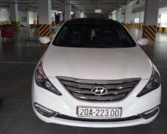 Chính chủ bán Hyundai Sonata Y20 2.0 AT đời 2009, màu trắng giá 485 triệu tại Thái Nguyên