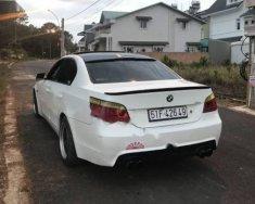 Bán xe BMW 5 Series 525i SX 2006, màu trắng, xe nhập giá 488 triệu tại Tp.HCM