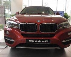 Cần bán BMW X6 xDriver35i đời 2016, màu đỏ, nhập khẩu nguyên chiếc giá 3 tỷ 249 tr tại Tp.HCM