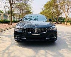 Bán ô tô BMW 5 Series 520i 2016, màu đen, nhập khẩu nguyên chiếc như mới giá 1 tỷ 750 tr tại Hà Nội