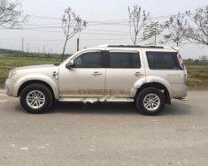 Bán xe Ford Everest 2.5L 4x2 MT sản xuất 2010, màu hồng phấn giá 496 triệu tại Hà Nội