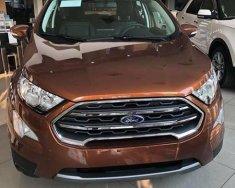 Bán ô tô Ford EcoSport 2018, giá chỉ từ 128 triệu là có ngay xe giá 540 triệu tại Bình Thuận