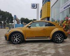 Bán xe Volkswagen Beetle Dune sản xuất 2017, màu vàng, nhập khẩu  giá 1 tỷ 469 tr tại Hà Nội