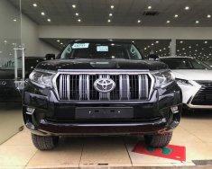 Cần bán xe Toyota Prado VX đời 2018, màu đen, nhập khẩu giá 2 tỷ 720 tr tại Hà Nội