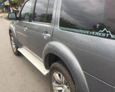 Bán Ford Everest năm 2010 giá 519 triệu tại Đà Nẵng