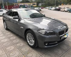 Bán xe BMW 5 Series 520i sản xuất 2015, màu xám, xe nhập giá 1 tỷ 600 tr tại Hà Nội