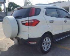 Cần bán Ford EcoSport sản xuất năm 2016 giá 580 triệu tại Tp.HCM