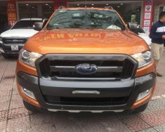 Bán Ford Ranger Wildtrak 3.2L 4x4 AT sản xuất 2016, hai màu, nhập khẩu nguyên chiếc chính chủ giá 810 triệu tại Hà Nội