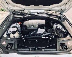 Cần bán gấp BMW 5 Series 528i năm 2013, nhập khẩu nguyên chiếc giá 1 tỷ 490 tr tại Tp.HCM