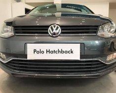 Cần bán Volkswagen Polo 1.6L PDI đời 2017, xe nhập giá 695 triệu tại Tp.HCM