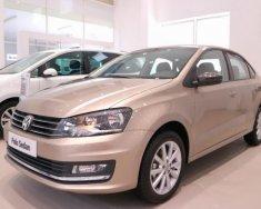Bán Volkswagen Polo 1.6L PDI đời 2017, màu nâu, nhập khẩu chính hãng, giá 699tr giá 699 triệu tại Tp.HCM