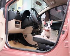 Bán xe Tobe Mcar năm 2010, màu hồng 130 triệu, xe con gái đi đẹp như mơ, ACE nhanh tay múc nào giá 130 triệu tại Hải Phòng