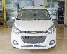 Cần bán xe Chevrolet Spark năm sản xuất 2018, màu trắng giá Giá thỏa thuận tại Tp.HCM