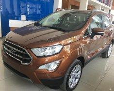 Cần bán Ford EcoSport 1.0 AT đời 2018, màu nâu giá 689 triệu tại Tp.HCM