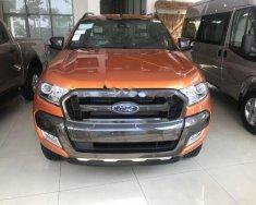 Bán xe Ford Ranger Wildtrak 3.2L 4x4 AT đời 2017, xe nhập, giá tốt giá 836 triệu tại Tp.HCM