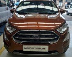 Xe Ford Ecosport 1.0 Ecoboost Titanium+ giá 689 triệu tại Tp.HCM