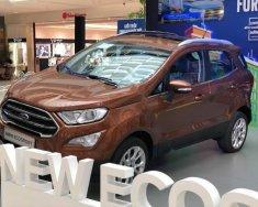 Bán Ford EcoSport Titanium 1.5L AT sản xuất 2018, màu nâu, giá tốt giá 648 triệu tại Tp.HCM