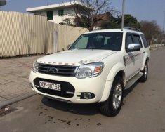 Chính chủ bán Ford Everest AT năm sản xuất 2013, màu trắng, 610tr giá 610 triệu tại Hà Nội