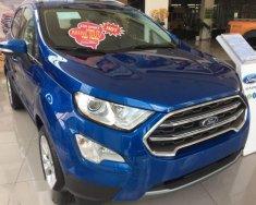 Cần bán xe Ford EcoSport sản xuất năm 2018, giá chỉ 600 triệu giá 600 triệu tại Tp.HCM
