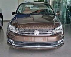 Bán ô tô Volkswagen Polo 1.6L I4 sản xuất 2017 giá 699 triệu tại Tp.HCM
